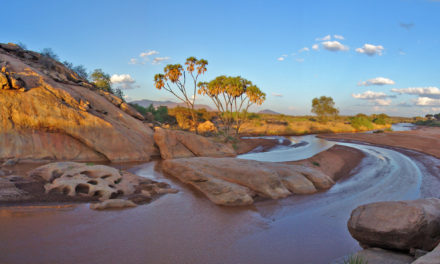 Karibu Kenya: The gateway to Kenya